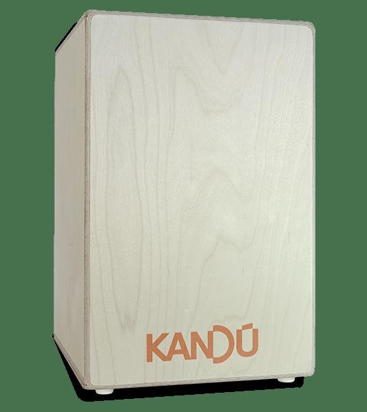 cajon-tempest-wood